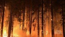 Задържаха заподозрян за пожара на остров Лерос