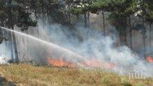 ОТ ПОСЛЕДНИТЕ МИНУТИ: Голям пожар пламна в Странджа планина