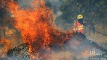 Продължава борбата с горските пожари и в Боливия