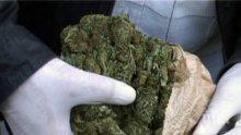 ПЪЛЕН ШАШ: Погребален агент къта 300 кила трева в ковчег