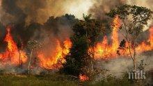 ОГНЕН АД: 21 области в страната са застрашени от пожари заради жегата утре