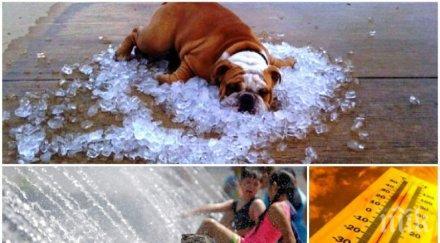 АДСКАТА ЖЕГА ПРОДЪЛЖАВА: Слънцето пече с пълна сила, температурите стигат 35 градуса