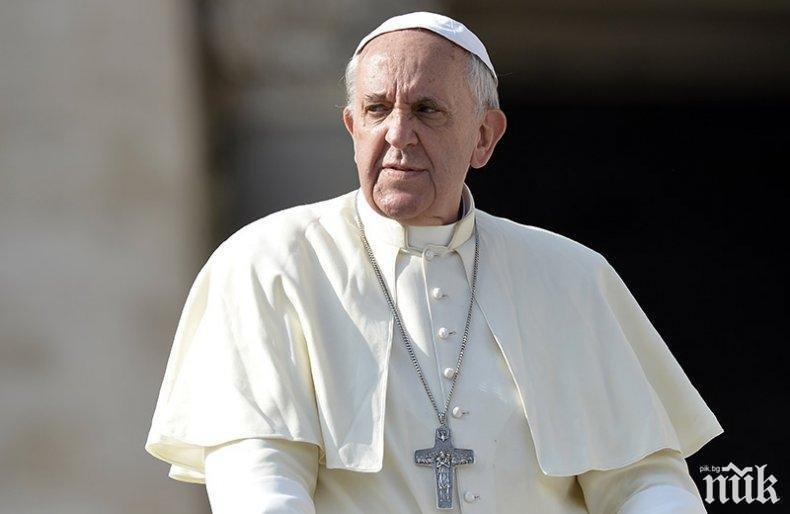 Папа Франциск притеснен заради пожарите в Амазония