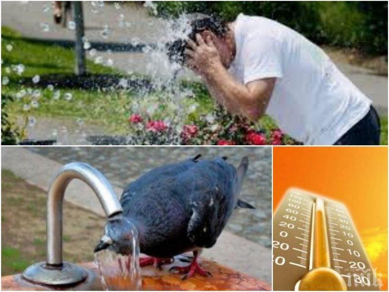 ЖЕГИТЕ ПРОДЪЛЖАВАТ: Слънцето ще грее щедро, температурите ще достигнат 37 градуса