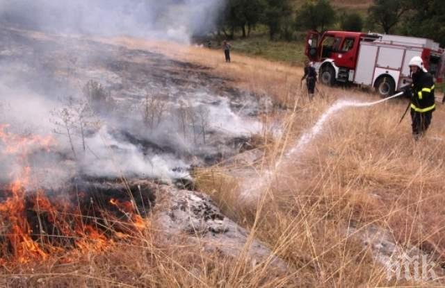 Голям пожар гори до село Бегово