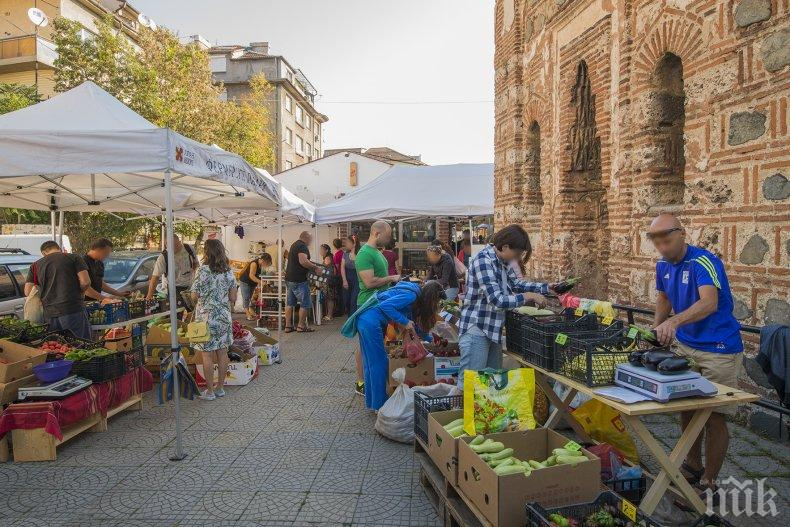 БИО: Японци снимат продукти на Римската стена