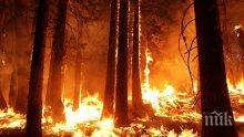 СТИХИЯ: Голям горски пожар край Атина