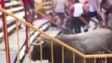 17 ранени при инцидент по време на празник с бикове в Херона (ВИДЕО)
