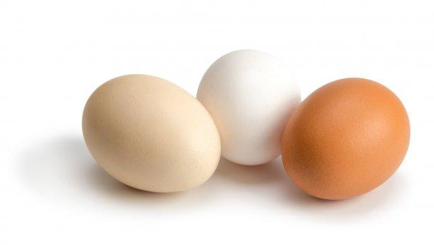 Кои яйца са по-полезни - белите или кафявите?