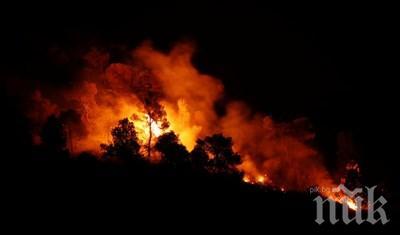 Стрелби запалиха военен полигон