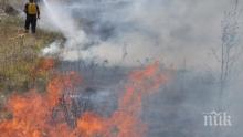 Пожар избухна в района на Сухото езеро в Рила