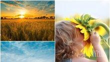 ВРЕМЕТО В ПЕТЪК 13-ТИ: Слънчево и ветровито, живакът ще скочи до 32 градуса. Ето къде ще е най-топло (КАРТА)