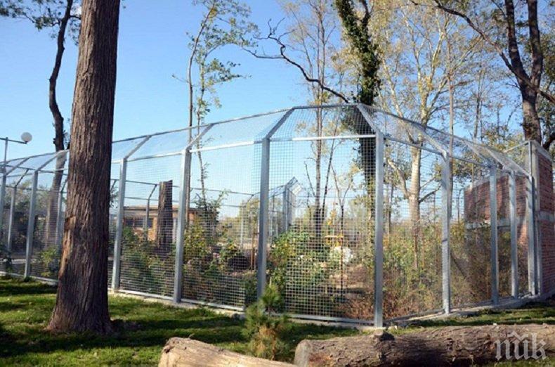 Търсят истината за фаула със зоопарка в Пловдив на очна ставка