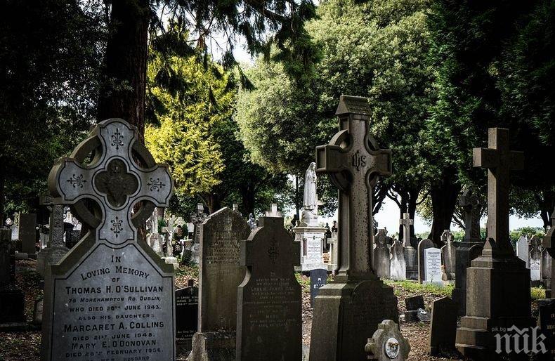 ГОРЕЩИ СТРАСТИ: Ирландска двойка се награби насред гробище (ВИДЕО, 18+)