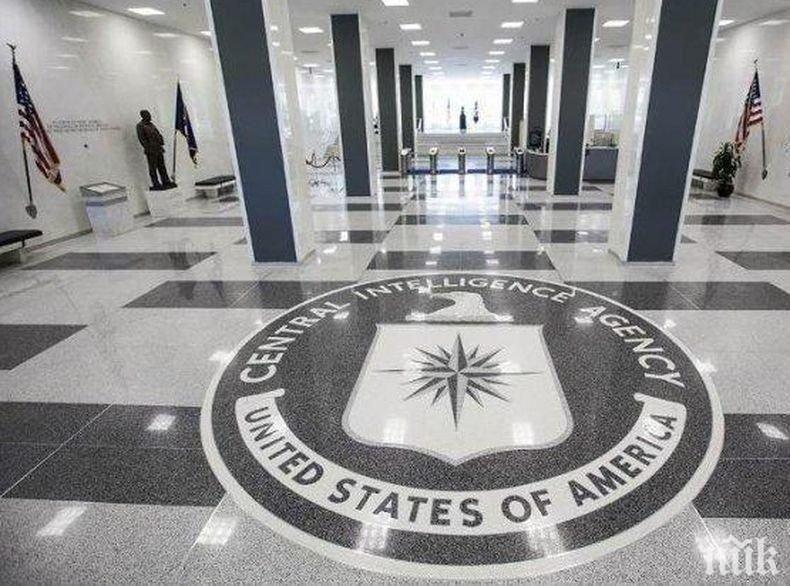 """ЦРУ разсекрети плановете си за използването на """"разузнавателни"""" гълъби"""