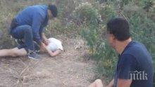 СКАНДАЛ: Хванаха кандидат-кмет да полива плантация с канабис (ВИДЕО/СНИМКИ)