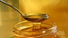 ВНИМАНИЕ: Внасяме мед с пестициди от Южна Америка