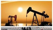 ПРОБЛЕМ: Саудитска Арабия сви производството на петрол заради йеменските хуси