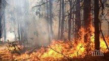 Вдигнаха хеликоптер от Крумово заради пожар в Рила
