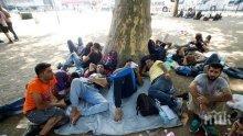 Уловиха 17 пришълци от Афганистан в гората на Божурище