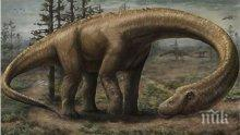 Учени разгадаха как са преживели последните си дни динозаврите