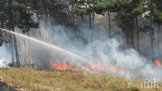 ОГНЕН АД: Стотици декари треви и храсти изгоряха край Бургас