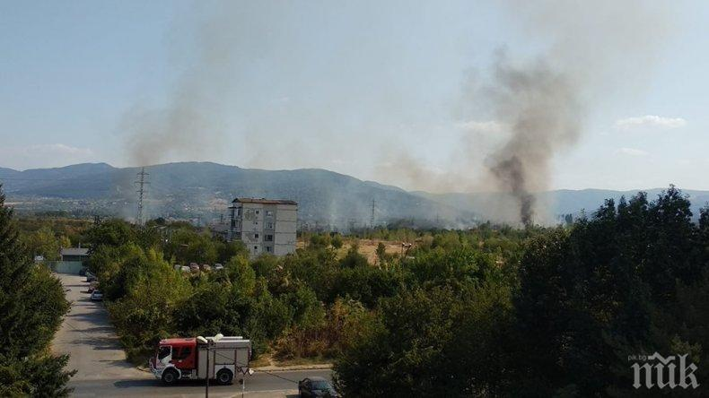 СТИХИЯ: Пожар пламна край Горубляне