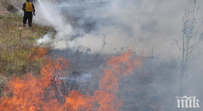 Угасиха пожара при Сухото езеро