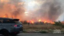 ОТ ПОСЛЕДНИТЕ МИНУТИ: Пожарът край летището в София е овладян