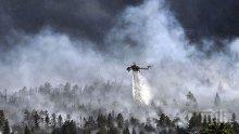 Пожарът на остров Закинтос изпепелил над 700 хектара земя