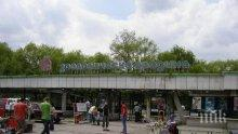 Софийският зоопарк пуска безплатен вход през уикенда