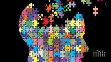 УЧЕНИ ДОКАЗАХА: Мозъкът работи най-добре наесен