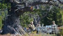 Путин събира гъби в сибирската тайга (ВИДЕО)
