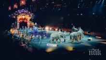 ШОКИРАЩО ВИДЕО: Вижте истинското лице на цирка