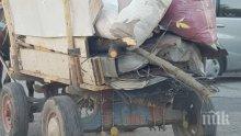В Хасково пропищяха - цигани крият незаконна дървесина под боклуци в каруци