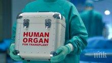 Трансплантираха четири органа на един пациент наведнъж