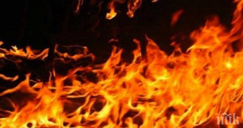 Пожари горяха в Трапезица