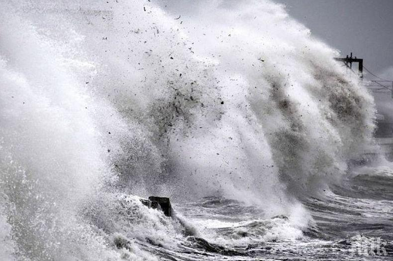 "Тайфунът ""Хагибис"" потопи кораб край Япония"