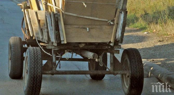 Жена пострада при катастрофа с каруца
