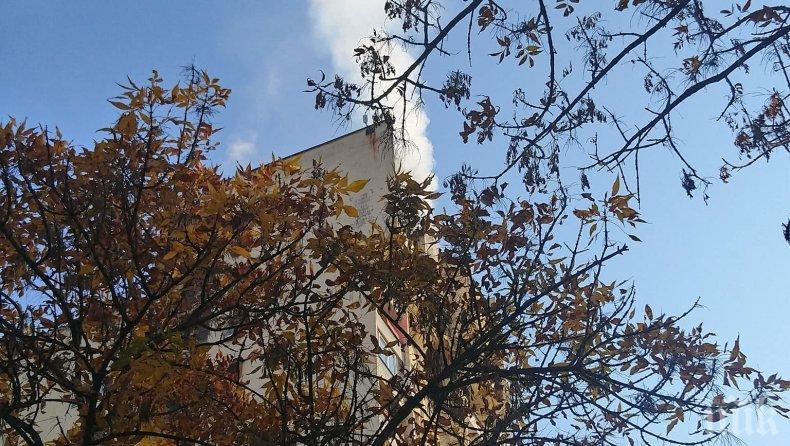 ИЗВЪНРЕДНО В ПИК TV! Голям пожар в София - гори последният етаж на жилищен блок, мъж е пострадал (СНИМКИ)