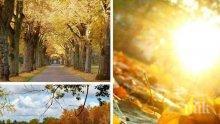 УСЕЩАНЕ ЗА ЛЯТО: Необичайно топлият и слънчев октомври продължава (КАРТА)