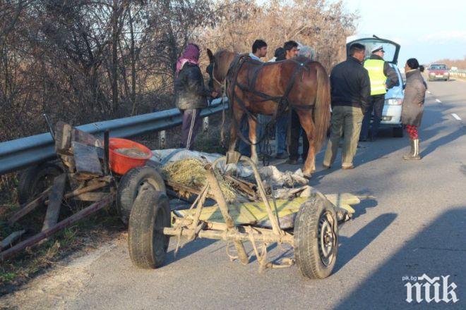 ТИР блъсна каруца, пострада 26-годишна жена