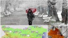 ЗИМАТА ИДВА: Студен въздух нахлува в България - температурите тръгват рязко надолу (КАРТА)