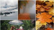 ХЛАДНА ЕСЕН! Ноември започва с облаци и дъжд, планините побеляват от сняг (КАРТА)
