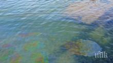 Петролен разлив затвори плажове в Мексико