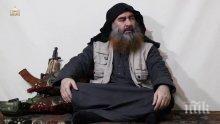 """Заловиха сестрата на убития лидер на """"Ислямска държава"""" Абу Бакр ал Багдади"""