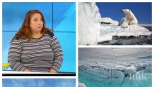 КАКВО СТАВА С ВРЕМЕТО: Климатолог разби мита за фаталното глобално затопляне! В момента сме в... ледена епоха