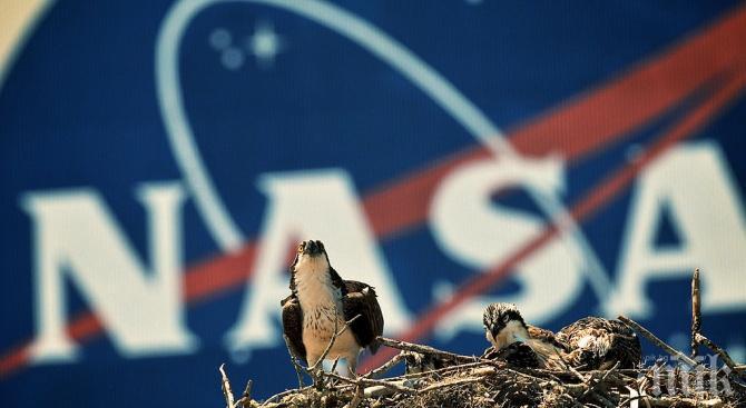 НАСА отвори недокосвани лунни проби