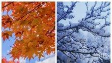 СУПЕР ПРОГНОЗА: Снегът се отлага, остава ненормално топло. Южнякът вдига градусите до 20