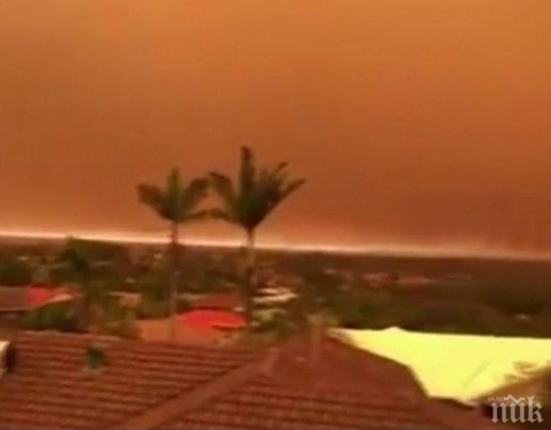 Поне една жертва и десетки ранени при пожарите в Австралия